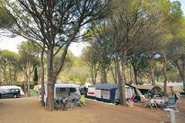 Camping Neus