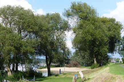 Campingplass De Hoge Waard