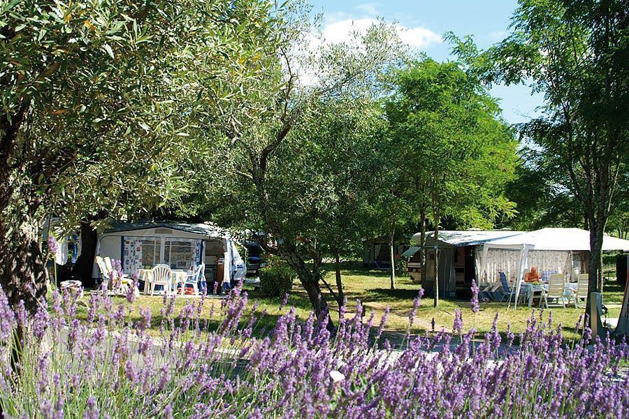 Campsite Sites & Paysages Le Petit Bois