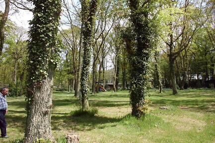 Camping Club du Soleil de la Porte Océane