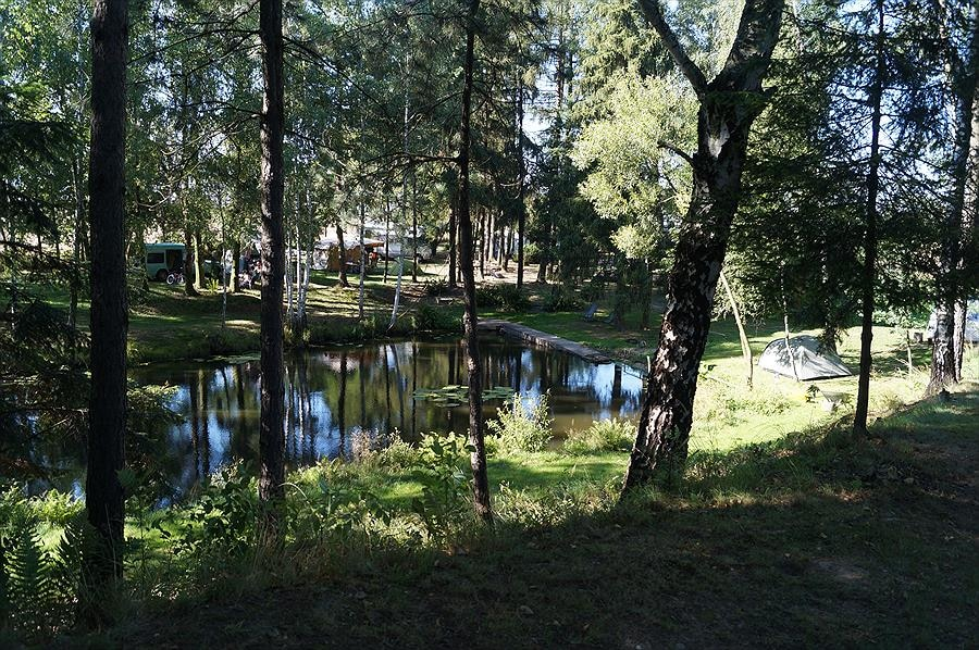 Camp 9 Nature Campground Poland
