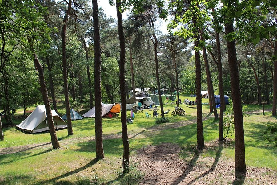 Camping Harskamperdennen